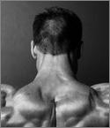 Las proteínas y el incremento de la masa muscular